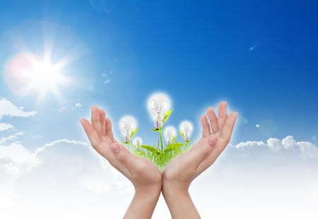 women hand with Light bulb over blue sky and green grass Stock Photo - 11001875