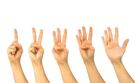 set van vrouw handen geïsoleerd op witte achtergrond