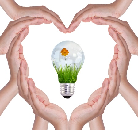 flower bulb: Love concepts - Female hands make heart shape and bulb with flower and grass inside