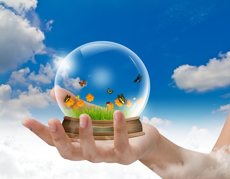 augur: Hand hold snow-dome against a blue sky with butterfly ,green grass ,yellow flower inside