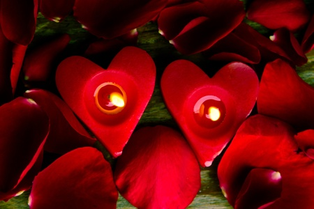 Valentines candles on rose petals background Stock Photo - 11993601