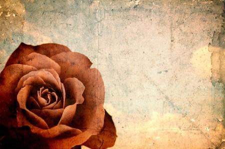 Grunge papel vacío con rosa roja