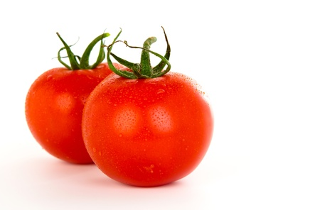 Tomatoes over white background photo