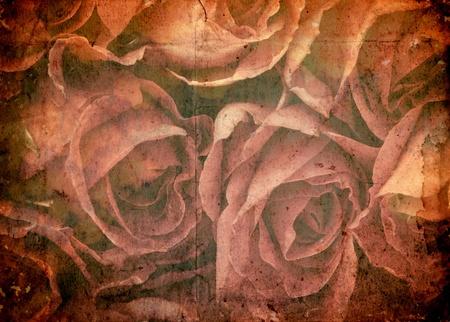 rosas naranjas: �poca rom�ntica rosa de fondo Foto de archivo