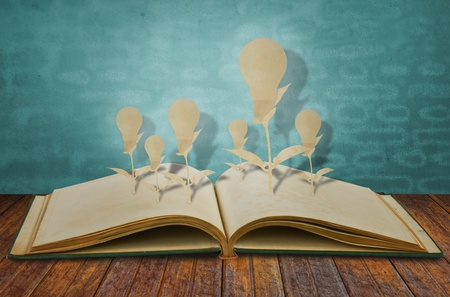 Paper cut of book of light bulb Stock Photo - 12775350