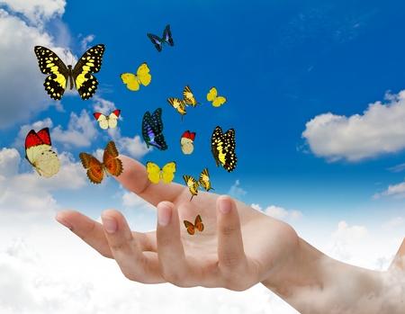 Mariposas de mano de retención