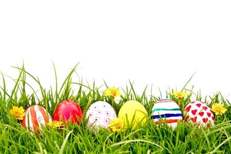 흰색 배경 위에 신선한 녹색 잔디에 꽃과 함께 부활절 달걀 스톡 사진