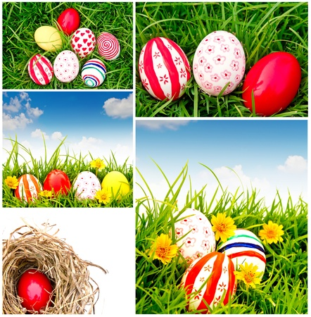 Collection of Easter Eggs  on Fresh Green Grass photo