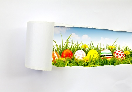 spring break: Easter eggs scene saw from ripped paper
