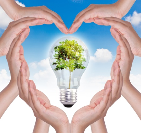 Hands make heart shape and light bulb with tree inside over blue sky photo