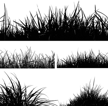 grass: Set of grass silhouettes Stock Photo