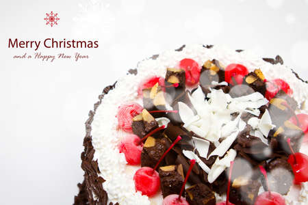 Decorated Christmas cake Stock Photo - 13638700