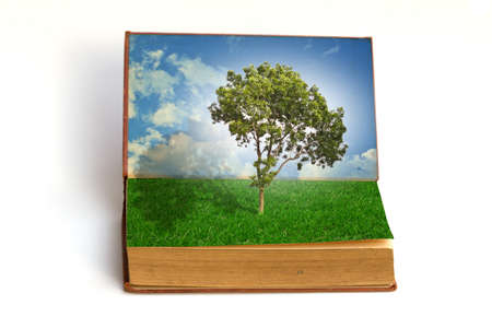 Tree growing from a book photo