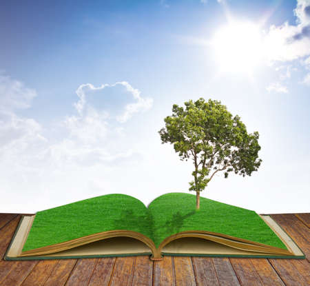 imaginary: Tree growing from a book
