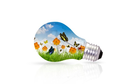 Light bulb and fresh spring green grass with butterfly photo