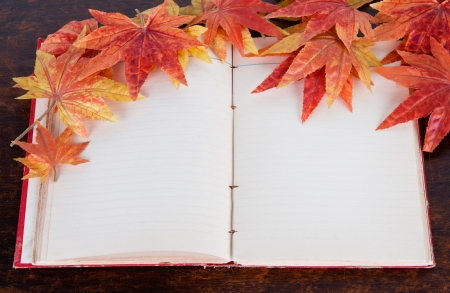 Open old book and Artificial autumn maple leafs photo
