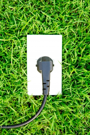 grounded plug: Energy concept outlet in  fresh spring green grass Stock Photo