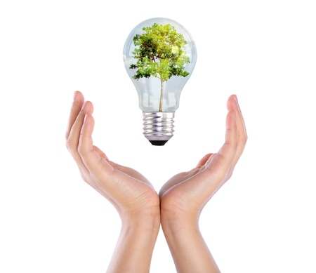 holding hand: Light bulb over hand (green tree growing in a bulb) Stock Photo