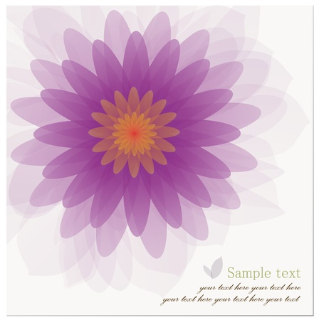 Abstract background of Beautiful Lotus Flower.  Vector