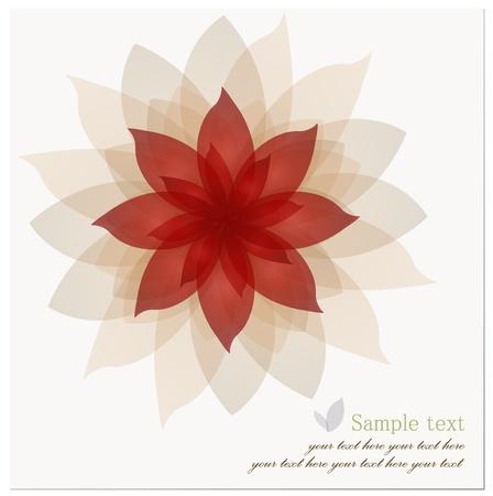 lotus flower: Romantic Flower Background.