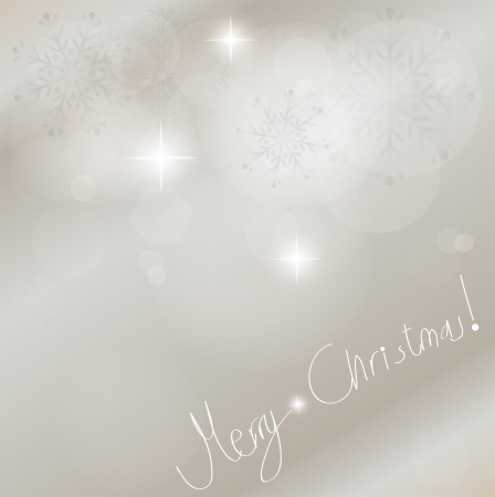 Light silver abstract Christmas background with white snowflakes, vector illustration  Vector
