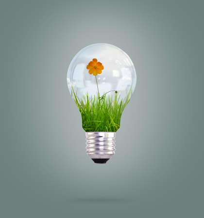 light bulb with beautiful flower inside photo