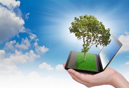 reciclar: Notebook Humano exploração de mão e árvore com grama no teclado Imagens