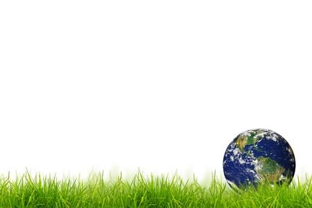 신선한 봄 녹색 잔디 파노라마 지구 흰색 배경에 고립입니다. 스톡 사진