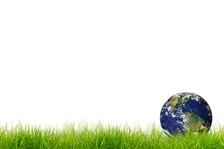 Earth in Fresh spring green grass panorama isolated on white background. photo