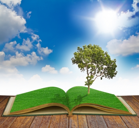 Magic book with Tree
