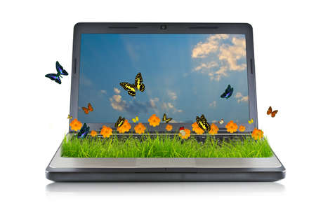 Laptop with yellow flower on grass and butterfly photo