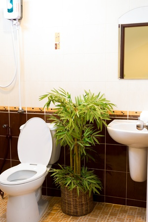 Toilet in the bathroom Stock Photo - 14944024