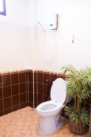 Toilet in the bathroom Stock Photo - 14943969