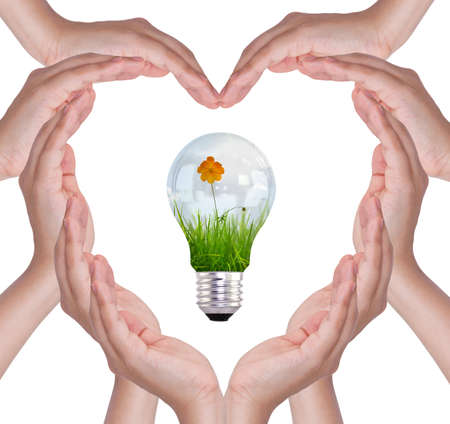 Love concepts - Female hands make heart shape and bulb with flower and grass inside photo