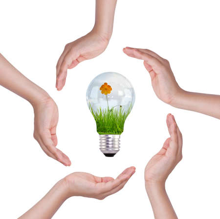 Light bulb in hand (light bulb with beautiful flower inside) photo