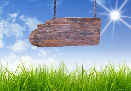 Wood sign with grass and blue sky photo