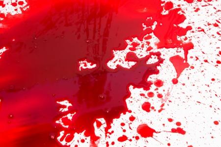drop of blood: Halloween concept : Blood splatter Stock Photo