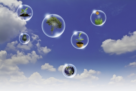 Eco concept : Business hand point tree, earth flower in bubbles against the sun and the blue sky photo