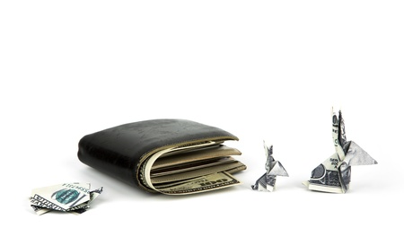 Business concept : Dollar currency origami  rabbit and  turtle with old black wallet on the white background Stock Photo - 16991688
