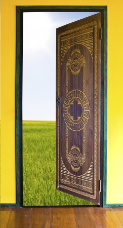 Door opening to green grass and blue sky Stock Photo - 17485054
