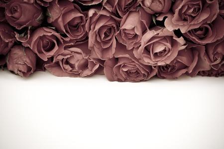 fabrick: Romantic vintage rose background