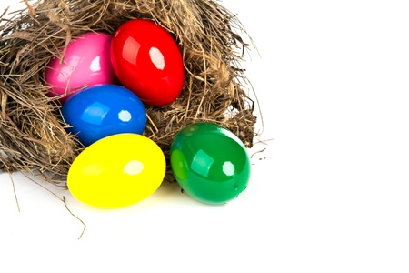 Colorful Easter eggs in a nest from branches on  white background photo