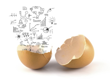 A brown color broken chicken egg with business concept out photo