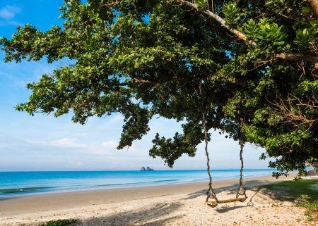Wooden swing on a tree on a tropical beach photo