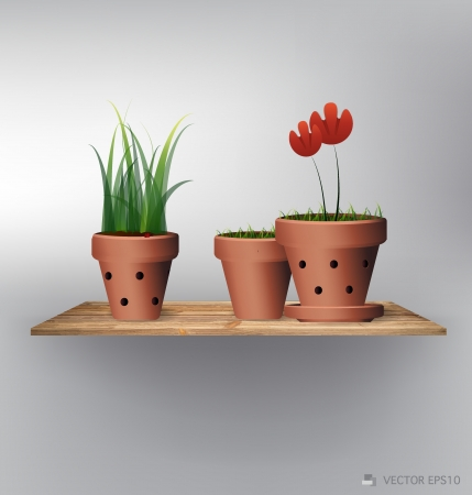 clay pot: Wood shelf with red flower plant in clay pot
