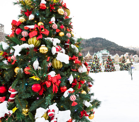 Christmas decoration with snow photo