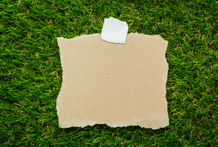 Blank recycled note paper on green grass background photo