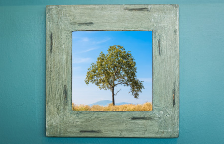 Wood frame on wall with tree and blue sky photo