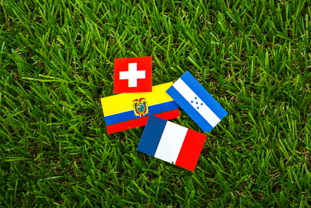 Paper cut of flags on grass for Soccer championship 2014 , group E photo