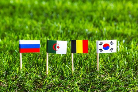 Scherenschnitt von Flaggen auf Gras für Fußball-EM 2014 Gruppe H
